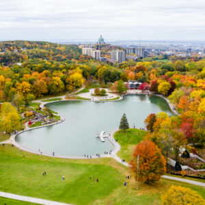 WHEN FALL COMES AROUND, MONTREAL